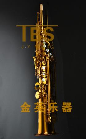 JYSS-201DG